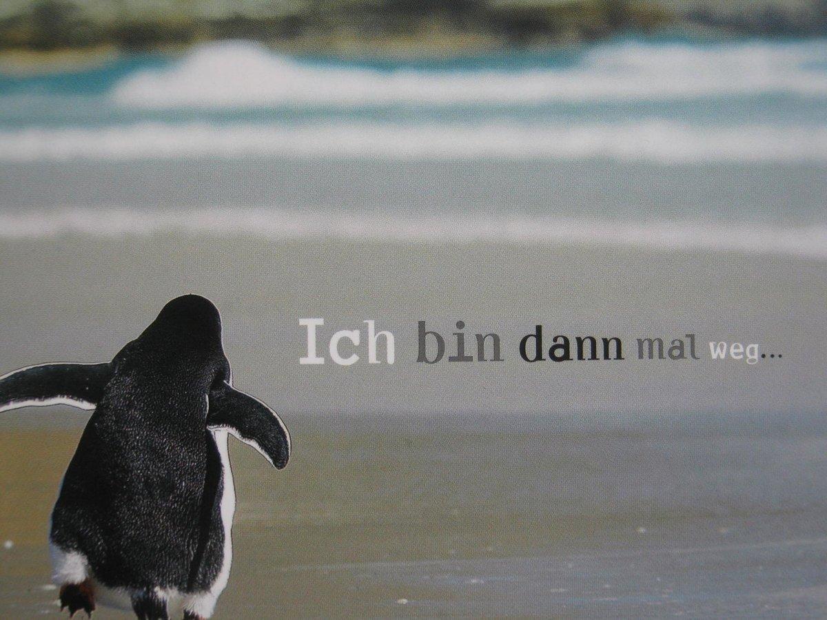 SPRUCH   Pinguin ich   Essen Ruhr