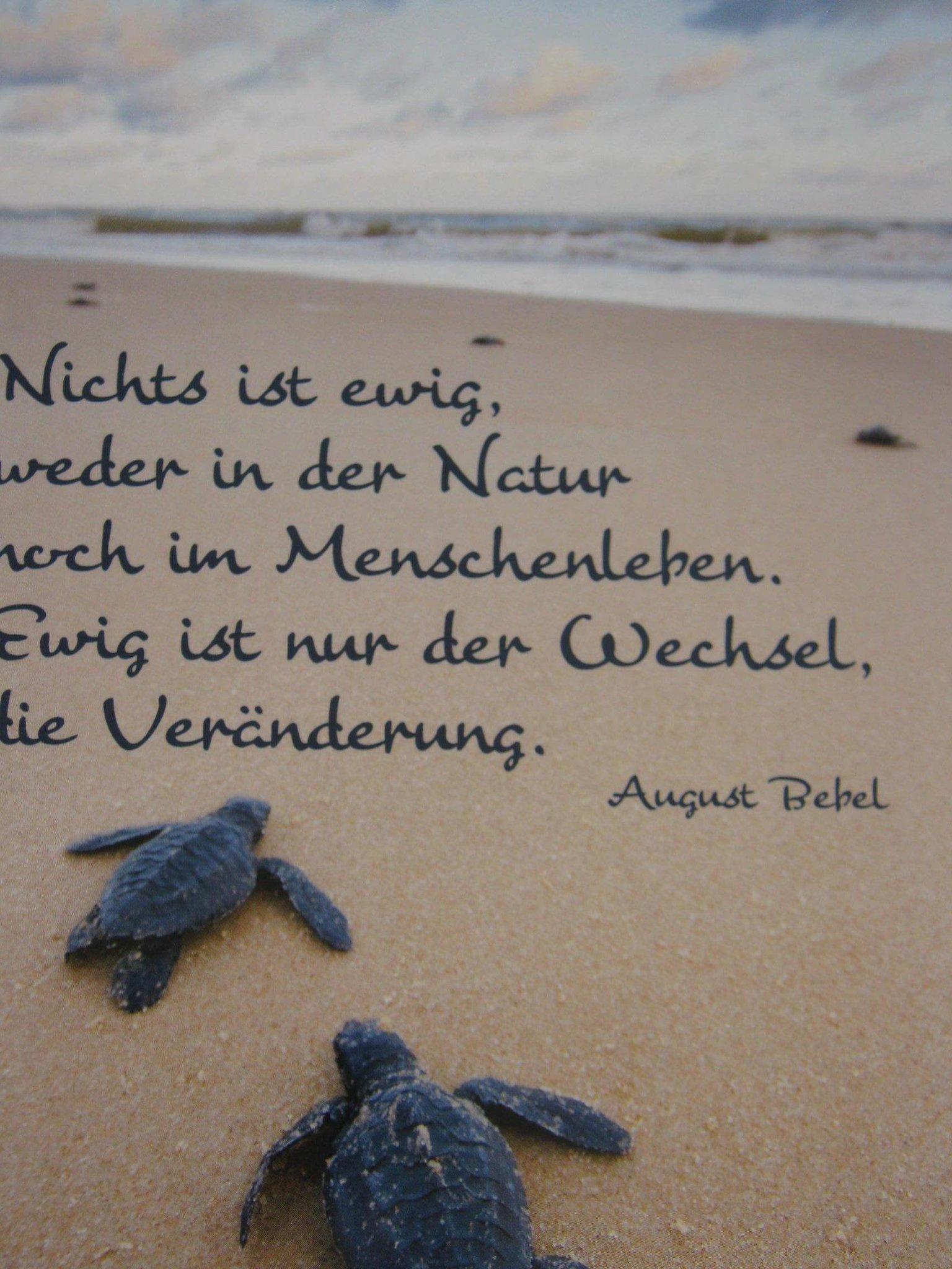 SPRUCH   Ewigkeit auch die Liebe ist NICHT EWIG???!!!   Essen Ruhr