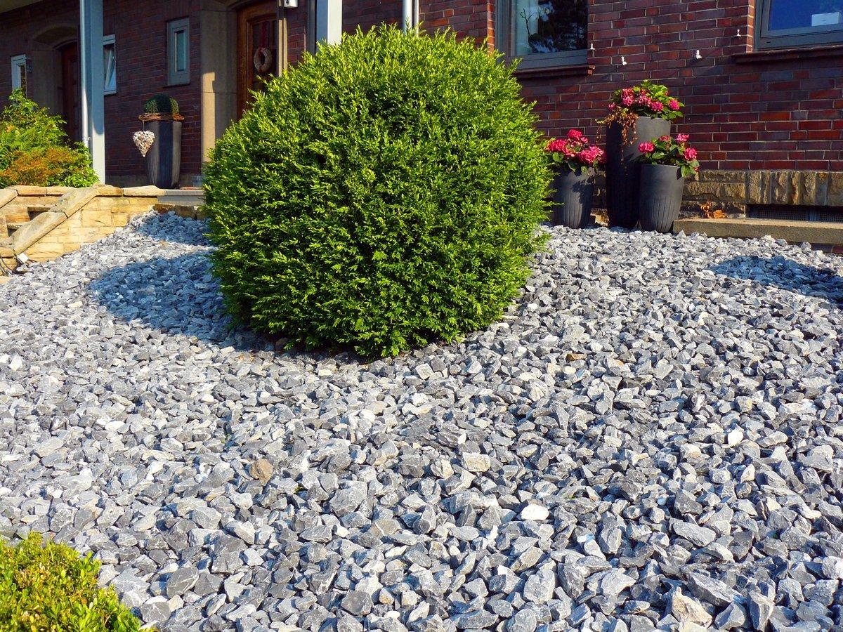 Doros Garten Journal 2 Sind Steine Die Neuen Pflanzen Lunen