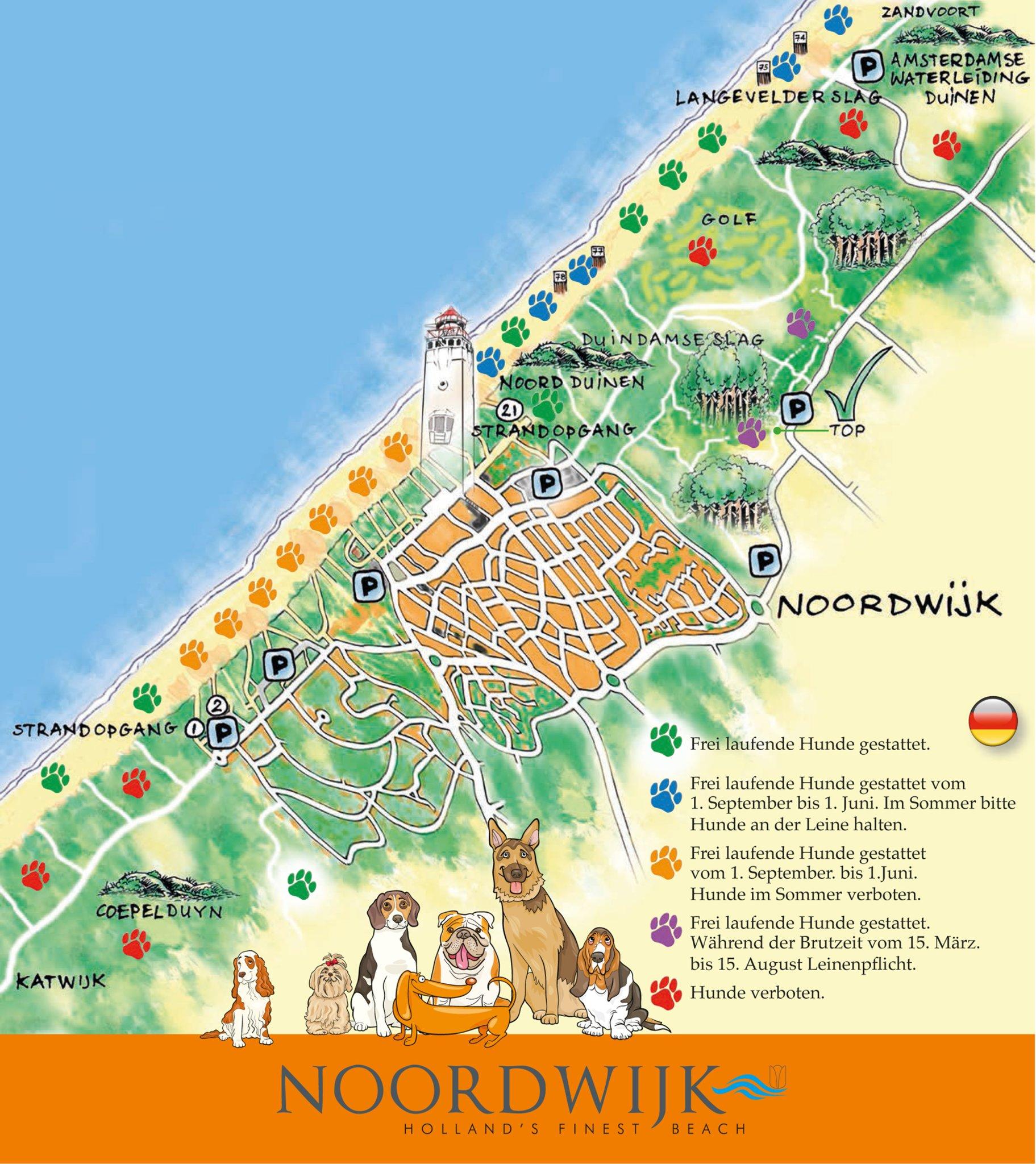 Strand Karte Zeeland.Zeeland Noordwijk Ein Paradies Fur Hunde Essen Sud