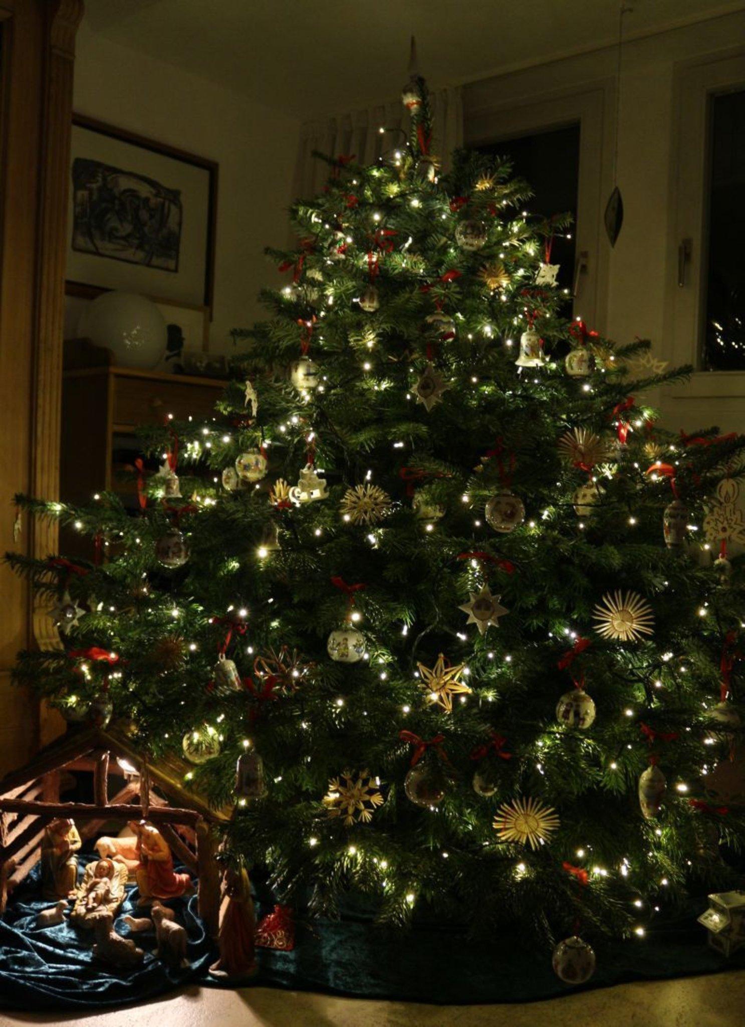 Kugel Für Tannenbaum.Foto Der Woche 51 Was Liegt Unter Eurem Christbaum Essen Süd