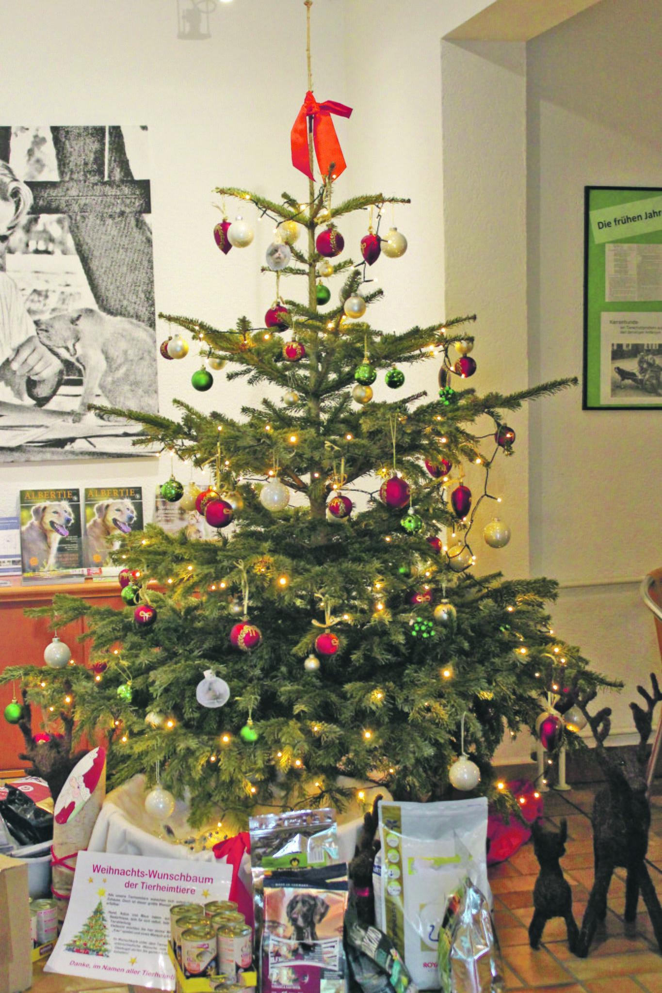 Tierheimtier-Wunschbaum wartet auf Wunsch-Erfüller! - Essen-Nord