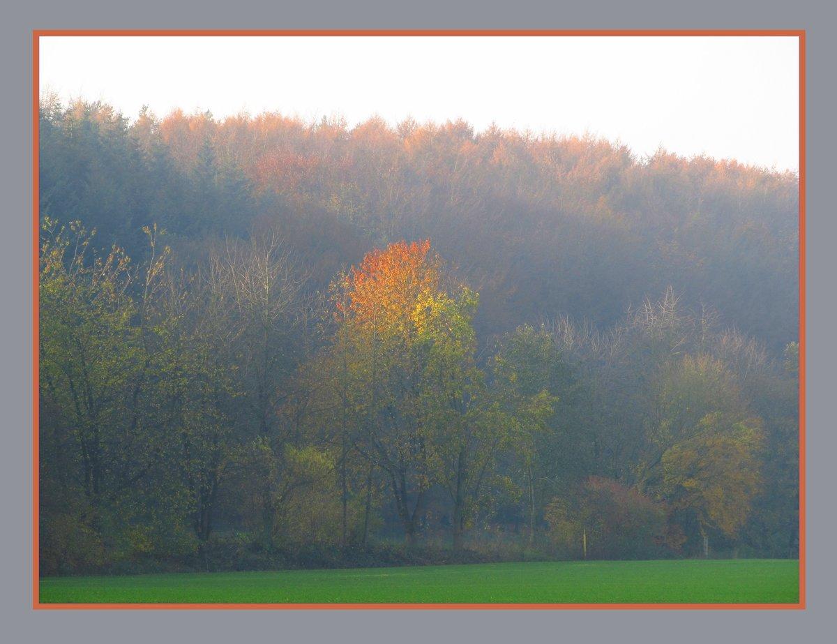 Der Herbst Eine Jahreszeit Fur Aktivitaten Zum Geniessen Und