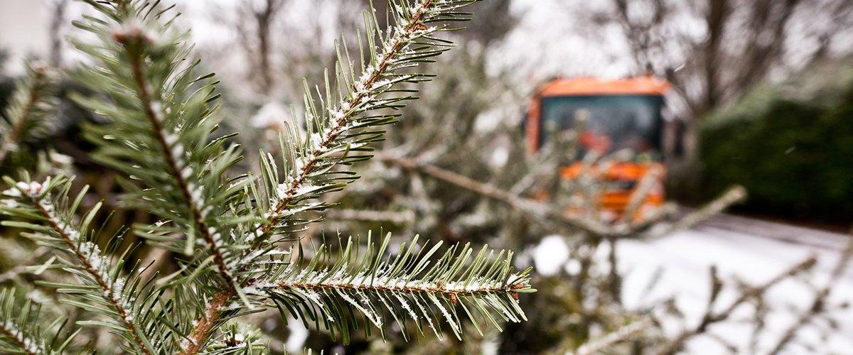 Weihnachtsbaum Künstlich 2m.Emmerich Kleve Goch Niederrhein Nordmanntanne Blaufichte