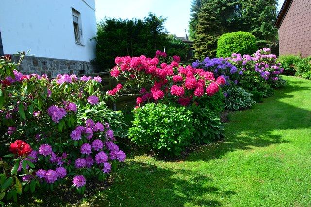 Gartenbilder Thema