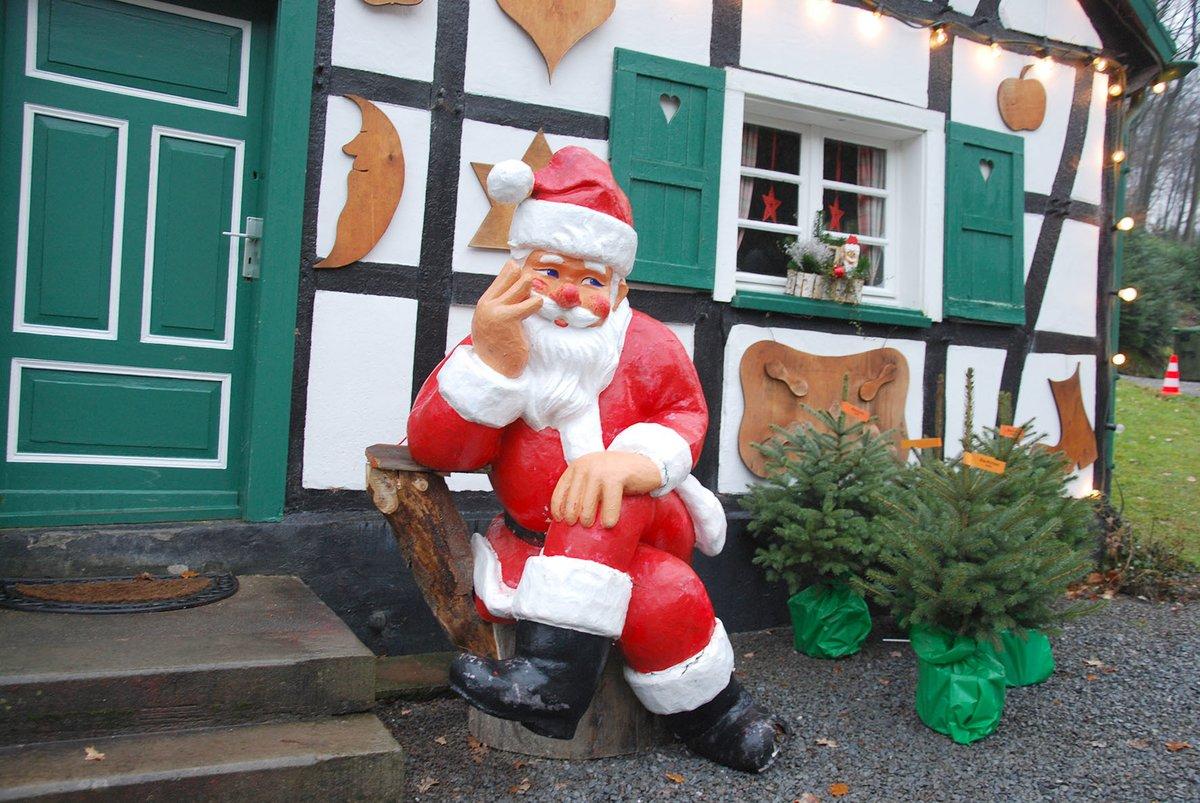 Gedicht Weihnachtsgebäck.Mitmachen Und Gewinnen Gedichte Für Ne Fichte Zehn Hobbypoeten