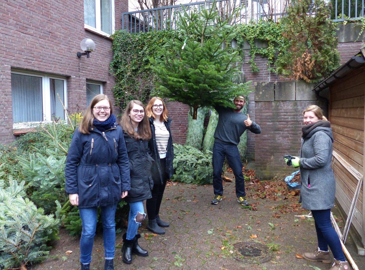 Weihnachtsbaum Selber Schlagen Sauerland.Weihnachtsbaum Verkauf Beim Kjg Jugendverband Mit Glühwein Und Mini