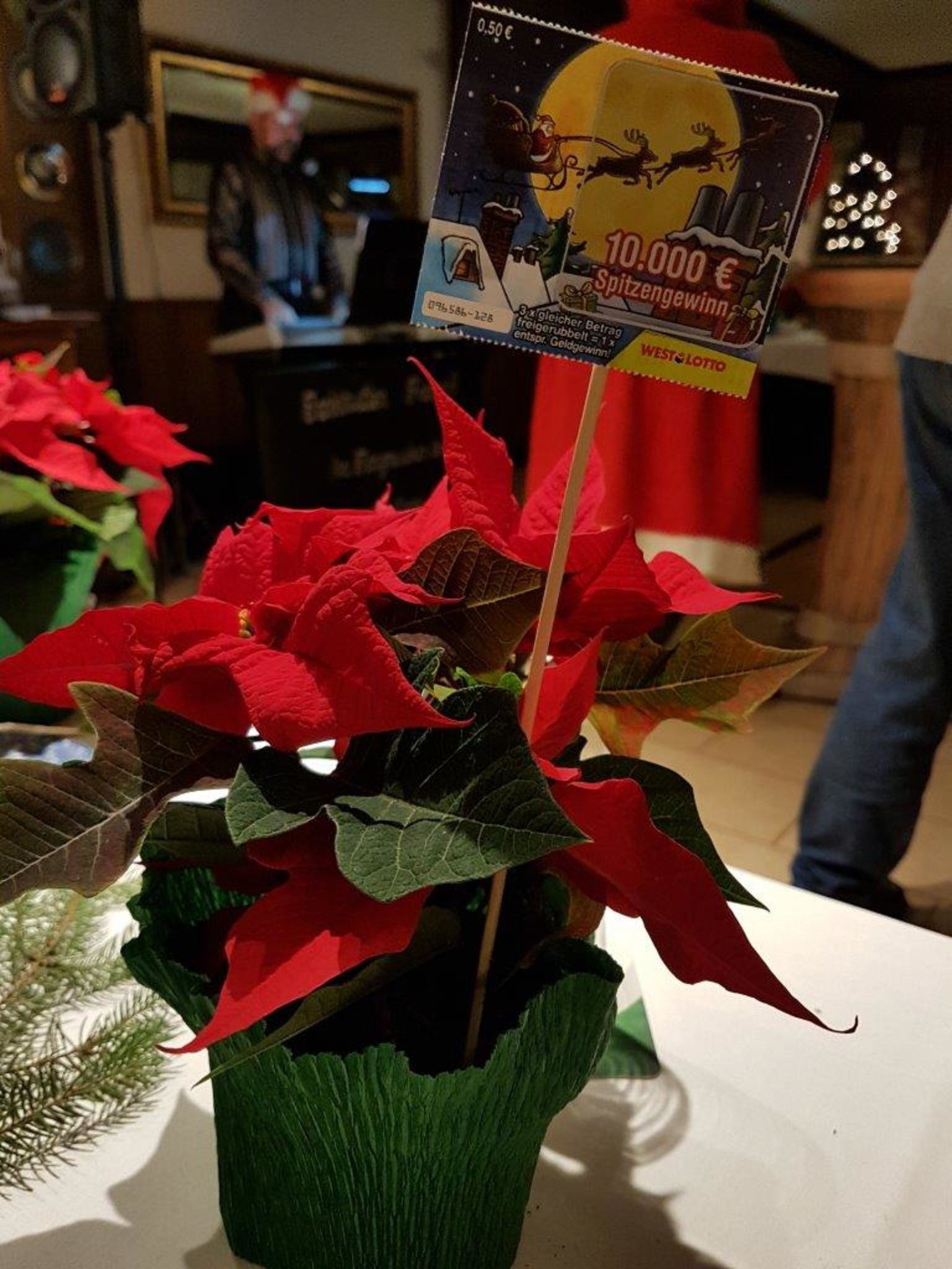 AWO Asseln Husen Kurl Weihnachtsfeier beschließt