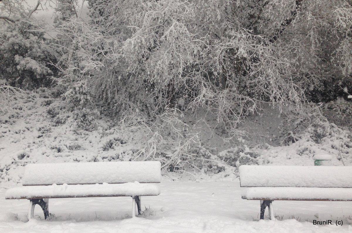 Weihnachten 2019 Schnee.Gedanken Und Erinnerungen Das Darf Doch Wohl Nicht Wahr Sein Wer