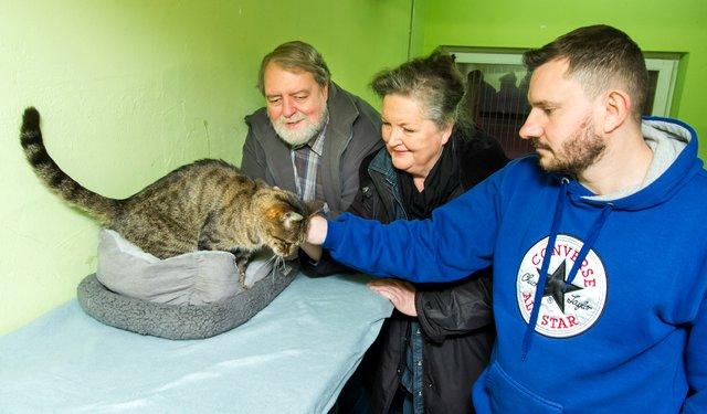 Schmusepaten Fur Waisenkatzen Duisburger Tierheim Sucht Dringend