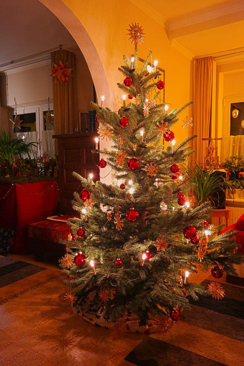 Tannenbaum Selber Schlagen Düsseldorf.Weihnachtsbäume Thema