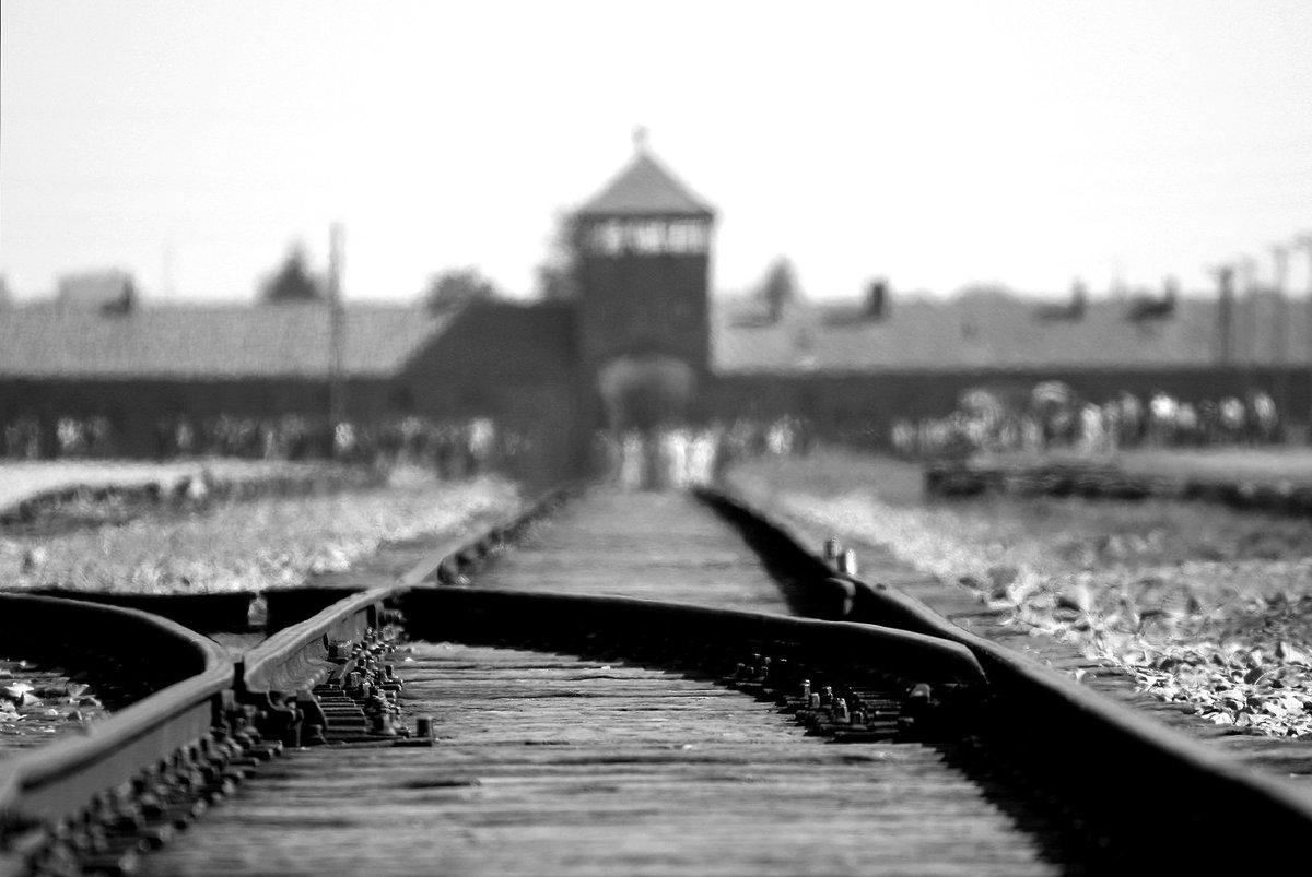 Holocaust Gedenktag Blumen Erinnern An Die Opfer Des Naziterrors
