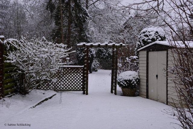 Garten Im Winter Thema