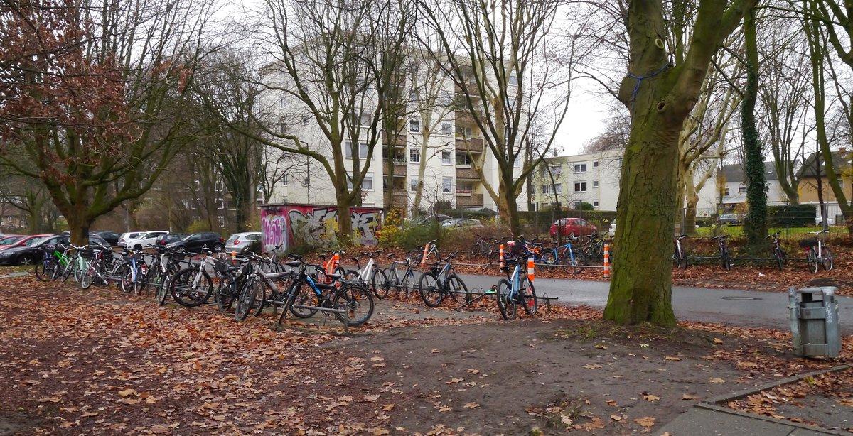 Grune Vernunftige Fahrradstander Fur Gsg Und Europaschule