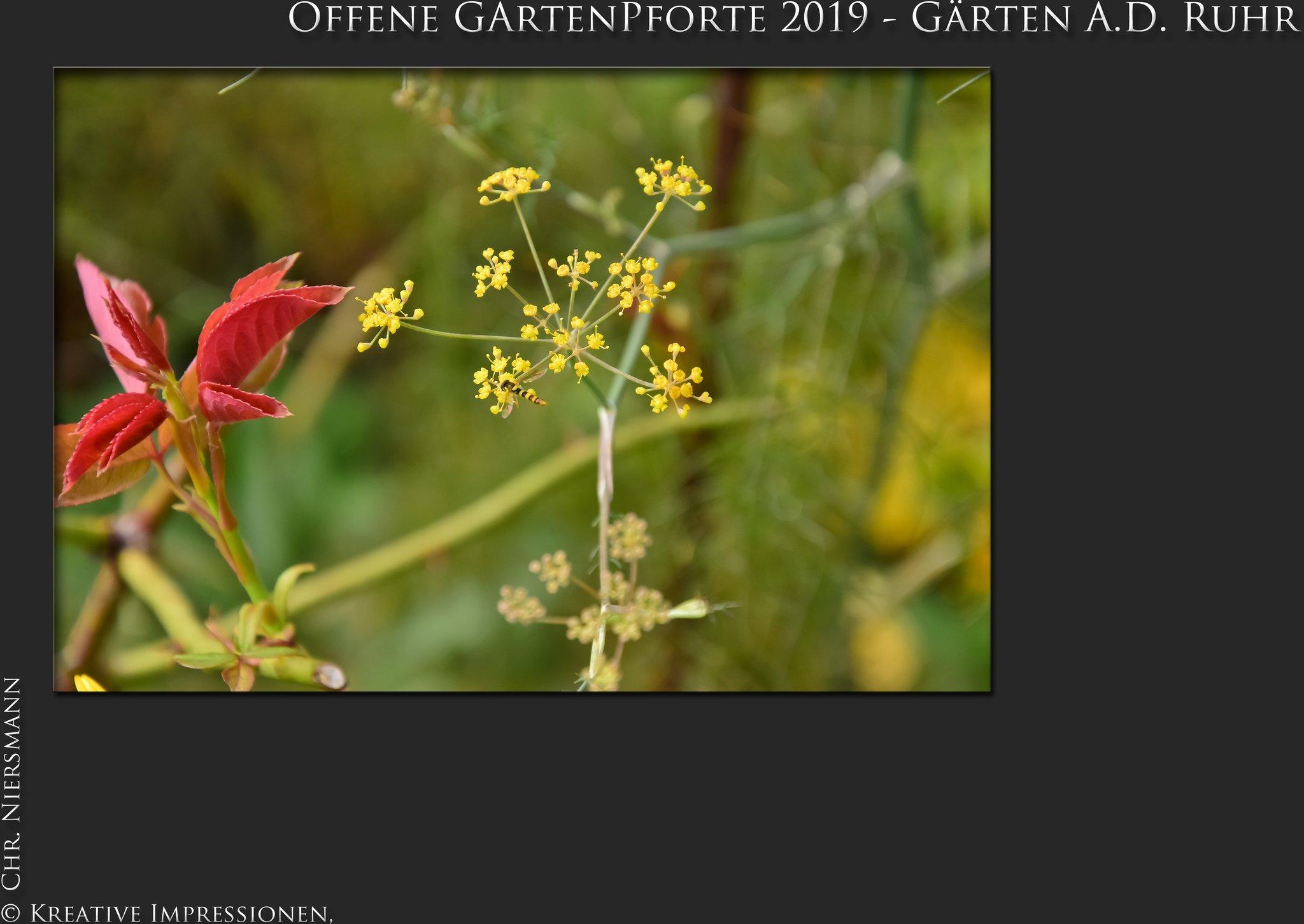 fene GartenPforte 2019 Gärten a d Ruhr Romantischer