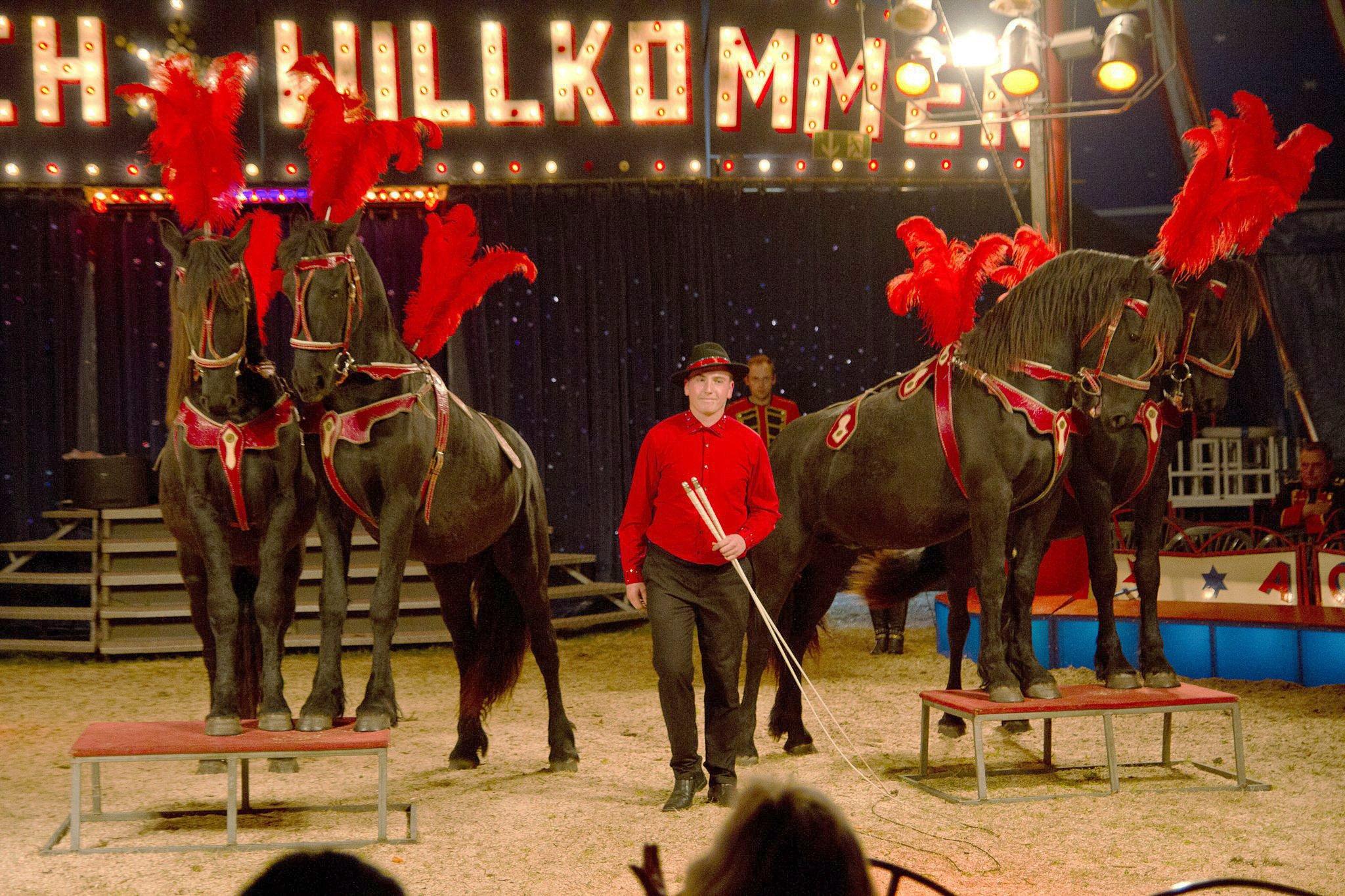 Sperrsitz Zirkus