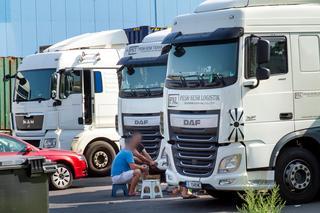 Persevera en cualquier clima. Los camioneros del sudeste de Europa pasan su tiempo libre en el camión en el puerto de registro, cocinan algo y hablan entre ellos. No hay dinero para una merienda, buscas en vano duchas e inodoros.