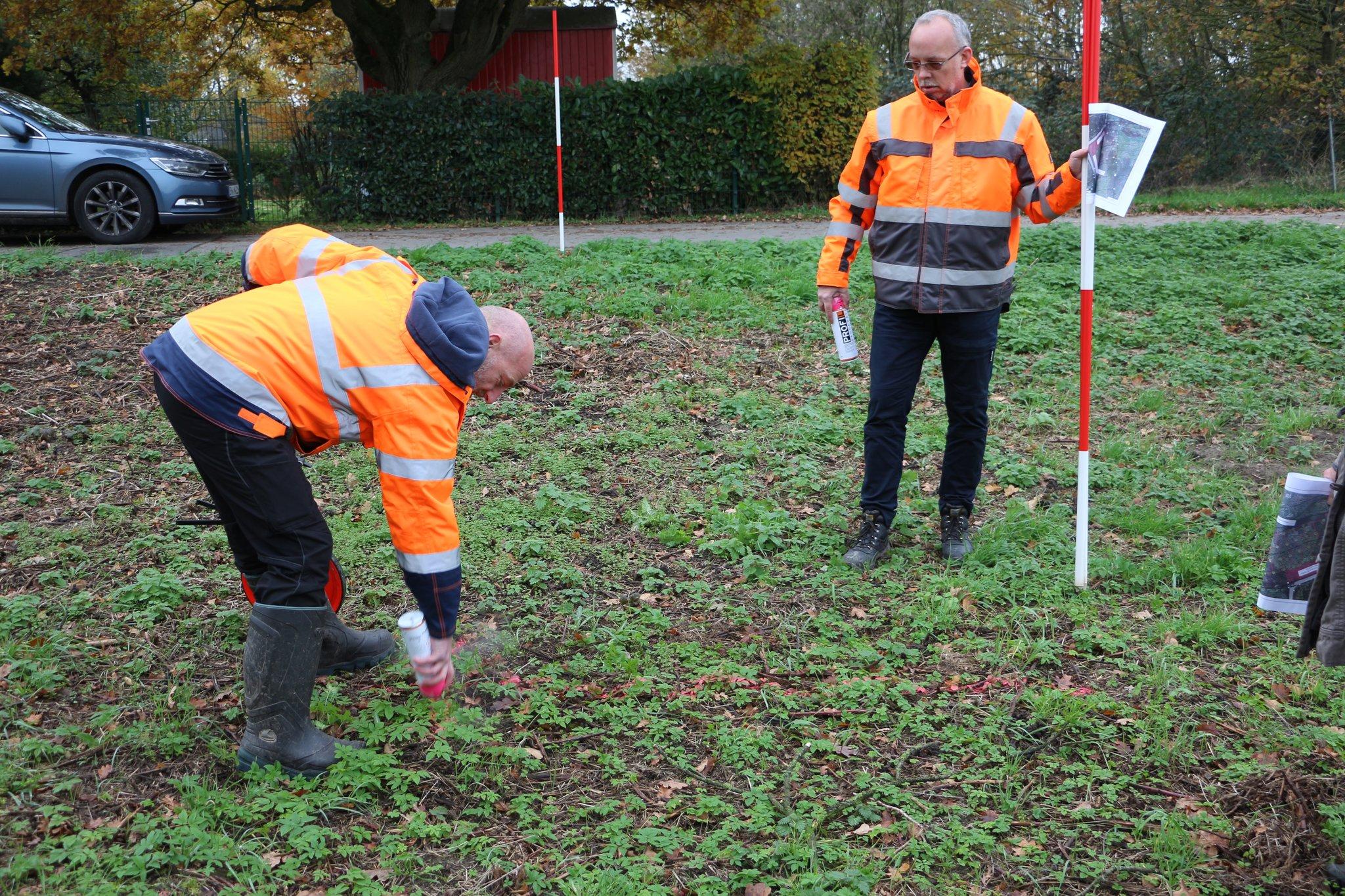 Baumchallenge geht weiter: Pflanzfeld in Wolfhagen ist vollständig mit Baumspenden gefüllt - Lokalkompass.de