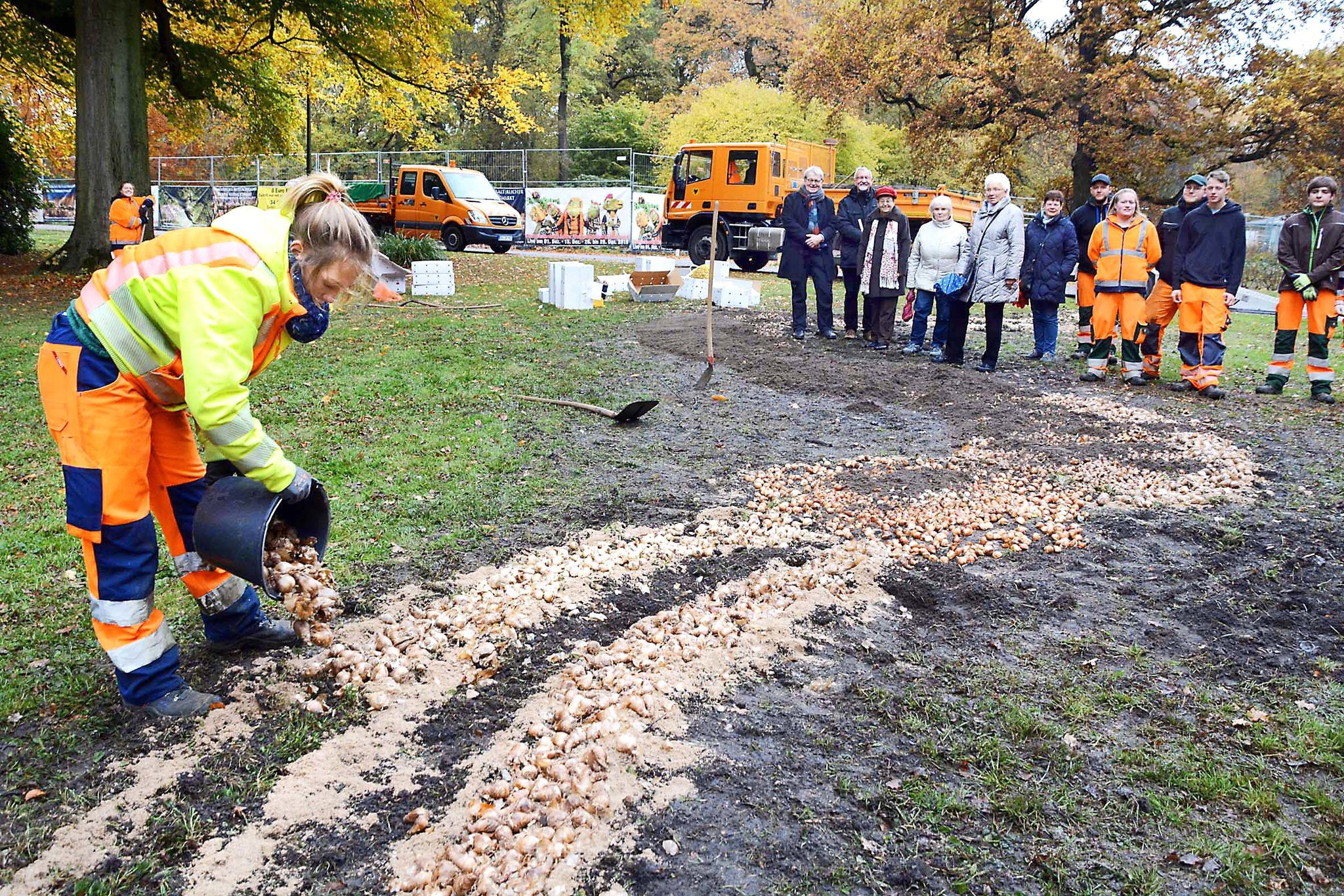 Vereinsspende des Freundeskreises: 10.000 Frühlingsblumenzwiebeln für den Fredenbaumpark gesetzt - Lokalkompass.de