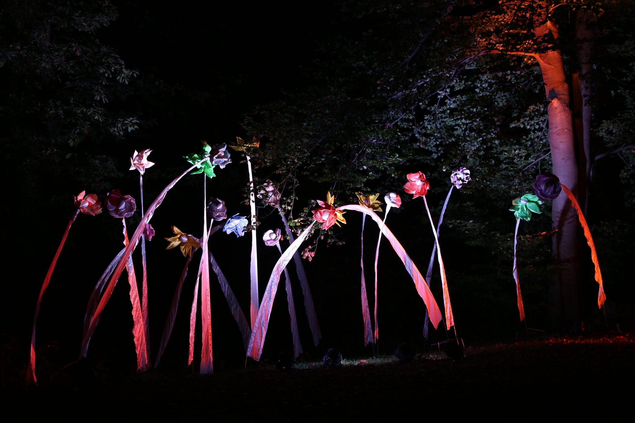 Herbstlichtgarten: Bunte Lichtspiele im Sauerlandpark Hemer - Hemer