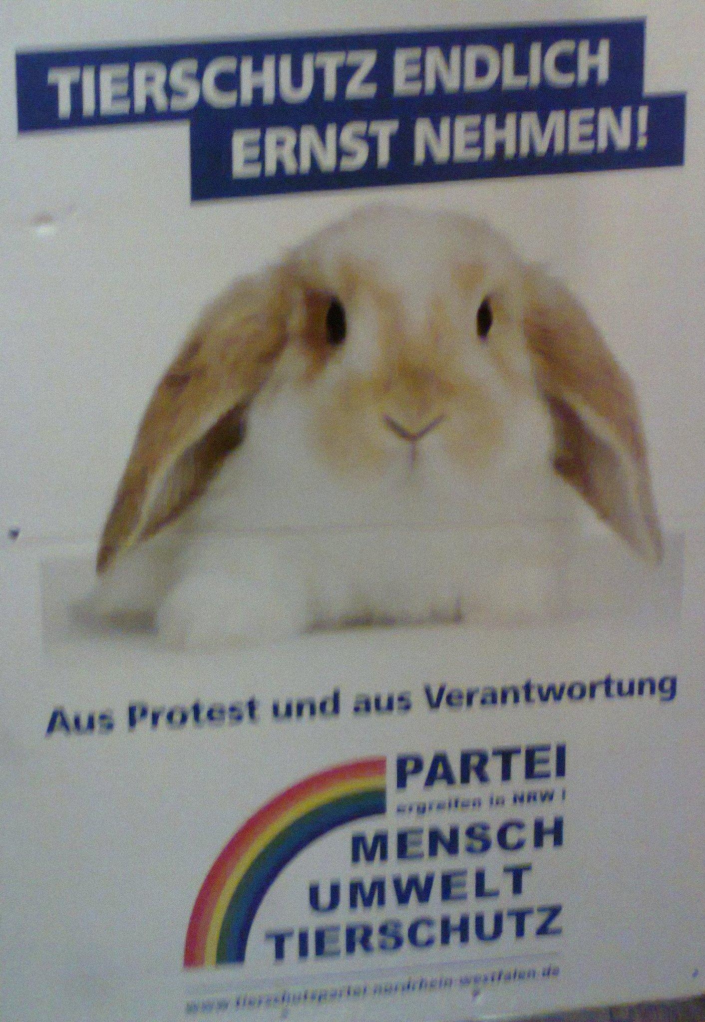 Tierschutz Partei