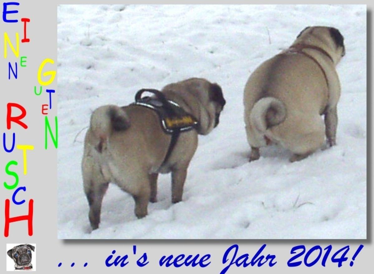 Einen guten Rutsch in\'s neue Jahr 2014...