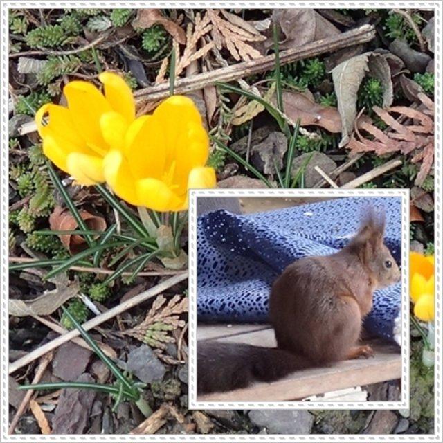 Ich Wünsche Euch Einen Schönen Abend Ein Frühlingstag Im