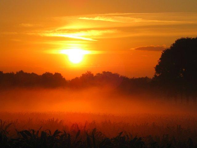 Guten Morgen Dorsten 01 07 2014