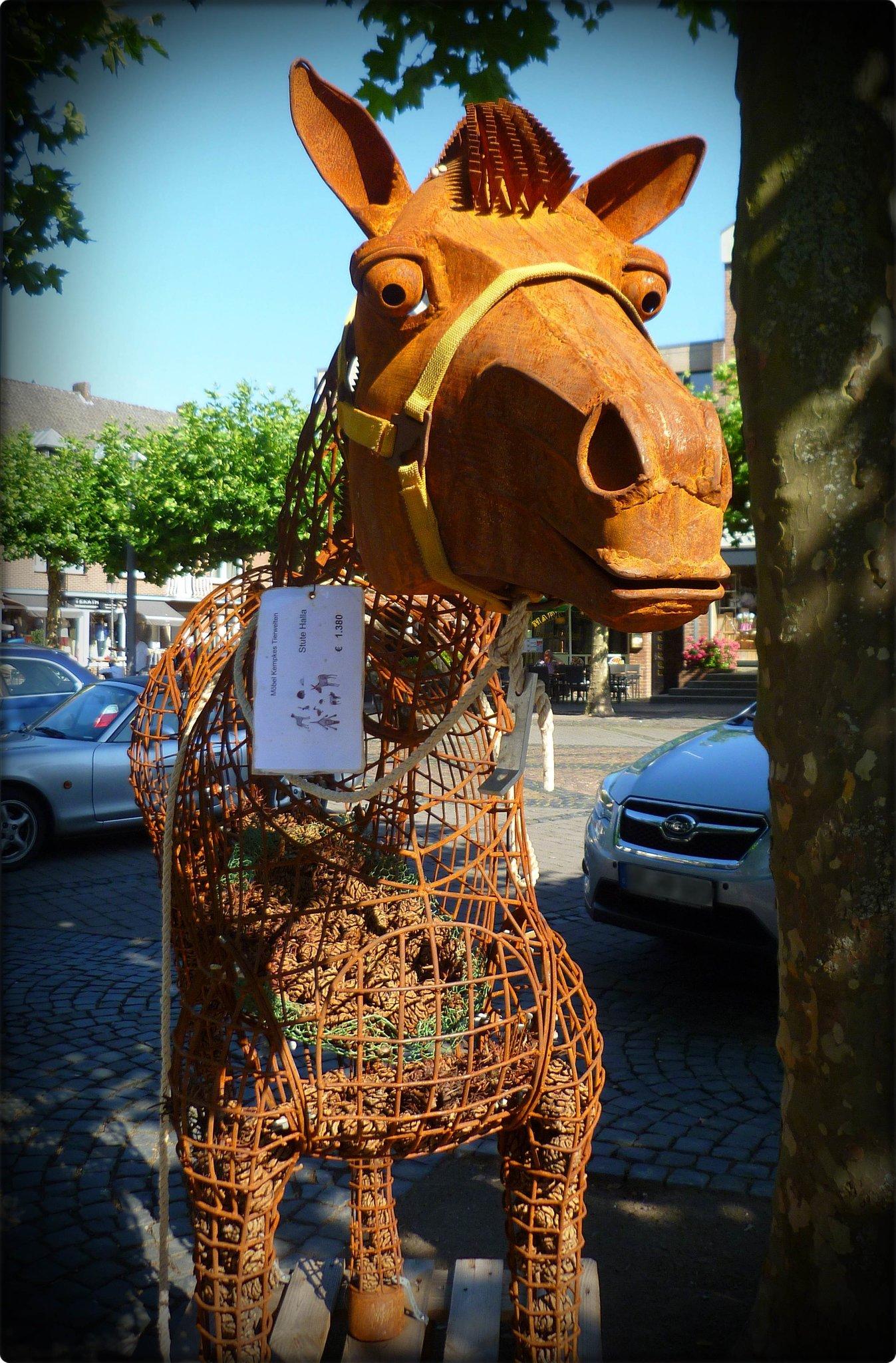 Iron Horse Stute Halla